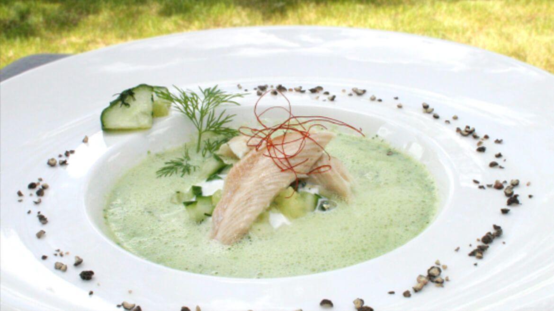 Gurken-Suppe