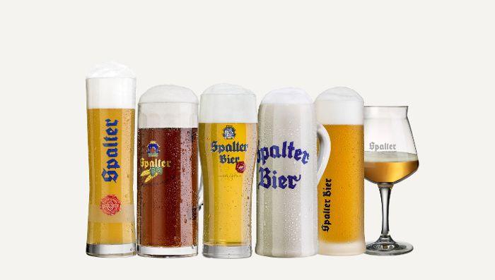 Spalter Biergläser